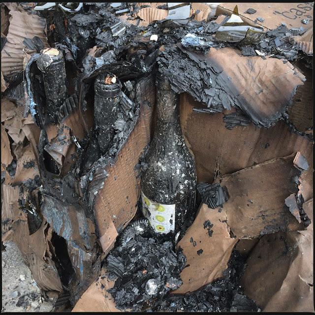 « CASA DE MOURAZ » domaine viticole Portugais, tel le phénix, il doit renaître de ses cendres